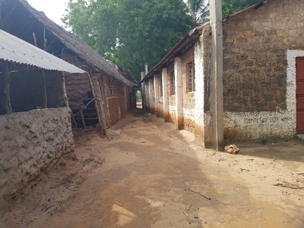 Scuola progetto MAZAO 4